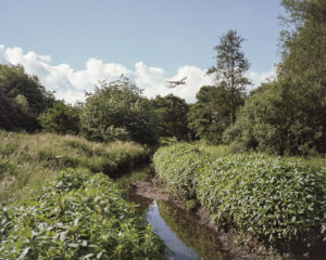 Tom Illsley Aircraft Taking Off Over Hatchford Brook, 2016 s