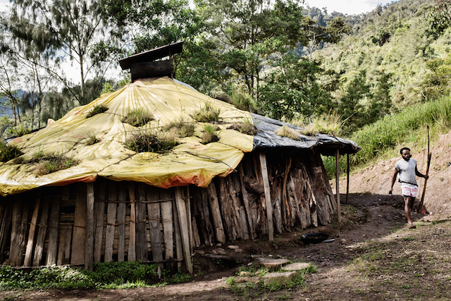 Houses of (Amungme) Tribe, one of the tribes in the Central Highland of Papua. Typically roofs are made of pampas grass taken from the edge of the forest. Now, they use tarpaulin as a roof. Tarpaulins are sent to the mountaineous areas by PT. Freeport MacMoran, and the cost of building their houses are burdened through corporate social responsibility program.