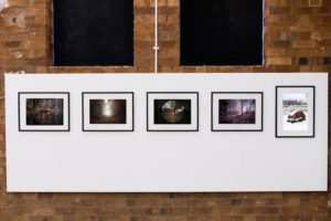 6 RPF17 AUTUMN EXHIBITION © BRADLEY PEARCE PHOTOGRAPHY